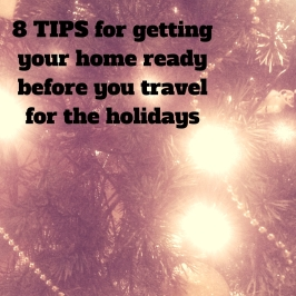 Holiday-proofing your house before you head out for the holidays!